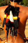 Roraima, Brazil. Yanomami man red, yellow, black and white feather decorations hanging down his back.