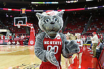 27 November 2015: Mr. Wuf, NC State's mascot. The North Carolina State University of North Carolina Wolfpack hosted the Winthrop University Eagles at the PNC Arena in Raleigh, North Carolina in a 2015-16 NCAA Division I Men's Basketball game. NC State won the game 87-79.