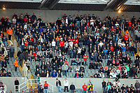 Saturday 17 November 2012<br /> Pictured: Swansea supporters<br /> Re: Barclay's Premier League, Newcastle United v Swansea City FC at St James' Park, Newcastle Upon Tyne, UK.