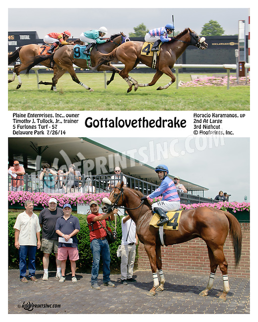 Gottalovethedrake winning at Delaware Park on 7/26/14