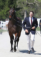 LEXINGTON, KY - April 26, 2017. #50 Fernhill Classic and Ryan Wood from Australia at the Rolex Three Day Event First Horse Inspection at the Kentucky Horse Park.  Lexington, Kentucky. (Photo by Candice Chavez/Eclipse Sportswire/Getty Images)