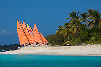 Hobie Cats lined up on the beach<br />