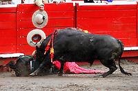 MANIZALES - COLOMBIA. 04-01-2016: Un banderillero es embestido, durante la primera corrida, novillada, como parte de la versión número 60 de La Feria de Manizales 2016 que se lleva a cabo entre el 2 y el 10 de enero de 2016 en la ciudad de Manizales, Colombia. /  A banderillero is savaged, during the first bullfight, as part of the 60th version of Manizales Fair 2016 takes place between 2 and 10 January 2016 in the city of Manizales, Colombia. Photo: VizzorImage / Santiago Osorio / Cont