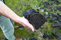 Man holding peat, Inverasdale, Scotland, UK