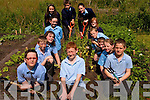 At Sneem National School Garden Front Row L-R Daniel O'Riordan, John Breen, Eric Burns.Left row from top - Kieran O'Connor Noreen Galvin, Molly Knightly, Nakita Rigter, .Back row - Mark O'Sullivan and Rebecca Murphy .Right row from top, Denise  Burns, Emer Fitzgerald, Michael John Murphy, Cadhla O'Sullivan