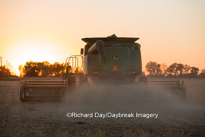 63801-07112 Farmer harvesting soybeans at sunset, Marion Co., IL