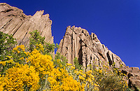 Shiprock volcanic neck and yellow flowers, New Mexico, USA