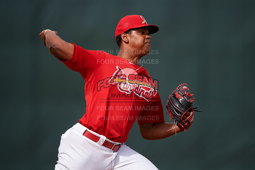 St. Louis Cardinals pitcher Alex Reyes (29) during practice before a Minor League Spring Training game against the New York Mets on March 31, 2016 at Roger Dean Sports Complex in Jupiter, Florida.  (Mike Janes/Four Seam Images)