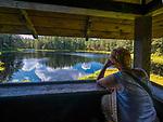 Wigierski Park Narodowy - wieża widokowa do obserwacji bobr&oacute;w i ptak&oacute;w wodnych nad jeziorem Suchar IV, Polska<br /> Wigry National Park - lookout tower for the sight of beavers and water birds on Suchar IV lake, Poland