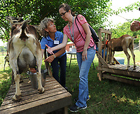 NWA Democrat-Gazette/ANDY SHUPE<br /> Linda Coffey (left), co-owner of a sheep and goat farm west of Prairie Grove and program specialist with the National Center for Appropriate Technology, speaks Wednesday, June 14, 2017, with Regina Merritt of Graceville, Fla., while showing her and other veterans and their families participating in NCAT's Armed to Farm program how to milk a goat during a tour of Coffey's farm.
