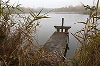 Europe/France/Centre/41/Loir-et-Cher/Sologne/Env de Chaon: Etang en Sologne // Europe/France/Centre/41/Loir-et-Cher/Sologne/Near Chaon: Pond Sologne