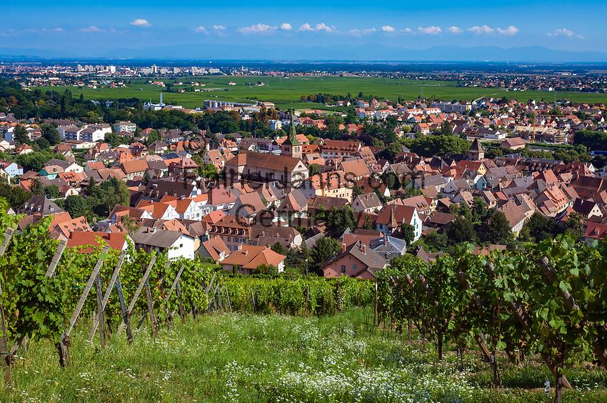 France, Alsace, Haut-Rhin, Turckheim: wine village   Frankreich, Elsass, Haut-Rhin, Turckheim: Weinort am Ausgang des Fechttals