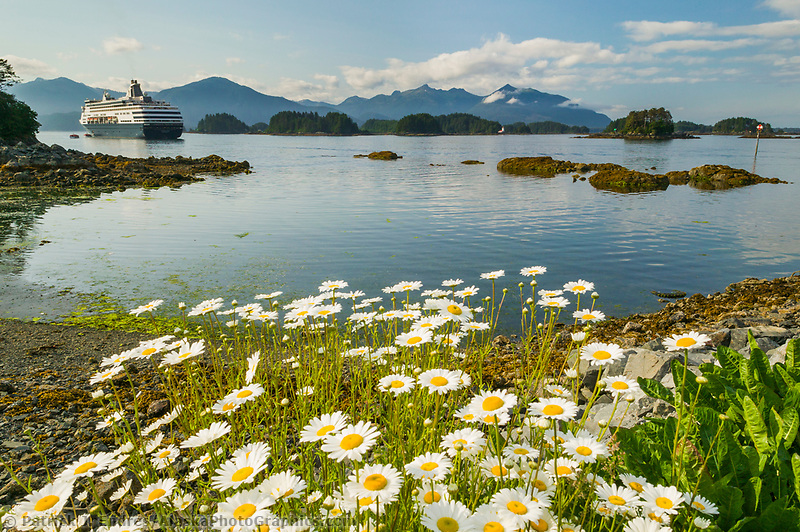 Holland America cruise ship in Sitka Sound, coastal town of Sitka along the Alaska Inside Passage. A favorite stop for tourist.
