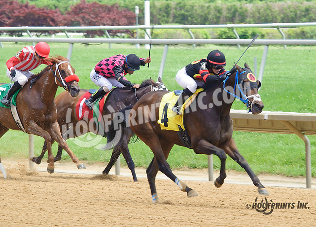 Lil' Smartiepants winning at Delaware Park on 6/6/16