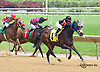 Lil' Smartiepants winning at Delaware Park on 6/6/16