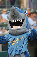 The Rally Shark, one of the Myrtle Beach Pelicans mascots before the team's game against the Frederick Keys on May 14, 2010 in Myrtle Beach, SC.