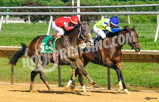 Clairvoyant Lady winningThe White Clay Creek Stakes at Delaware Park on 8/3/16