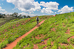 Mountain biking the Wasatch Crest trail in Park City Utah