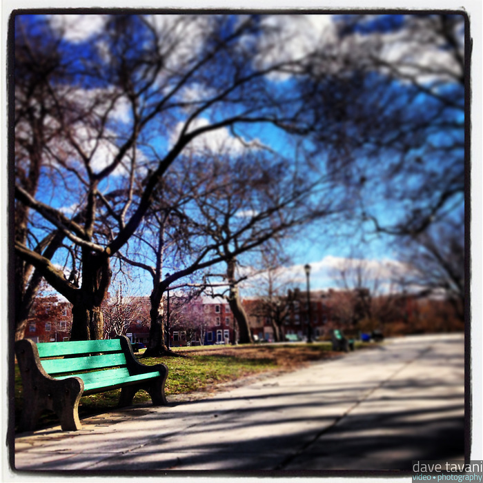 A lonely bench sits in the sun in Jefferson Square Park in South Philadelphia, January 31, 2013.
