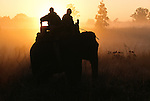 Art Wolfe on Elephant safari, Kanha National Park, India
