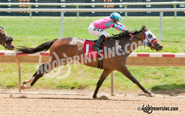 Sir Charge winning at Delaware Park on 7/15/13