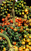 Amazon, Brazil. Palm fruits at the market.