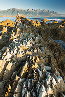 Rock formations of Kaikoura coastline with Kaikouras mountains in background and seaweed, Kaikoura, Marlborough Region, South Island, East Coast, New Zealand