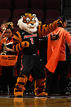 March 6, 2015; Las Vegas, NV, USA; Pacific Tigers mascot performs against the San Francisco Dons during the first half of the WCC Basketball Championships at Orleans Arena.