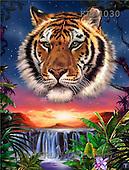 Interlitho, Lorenzo, REALISTIC ANIMALS, paintings, tiger portrait, falls(KL4030,#A#) realistische Tiere, realista, illustrations, pinturas ,puzzles
