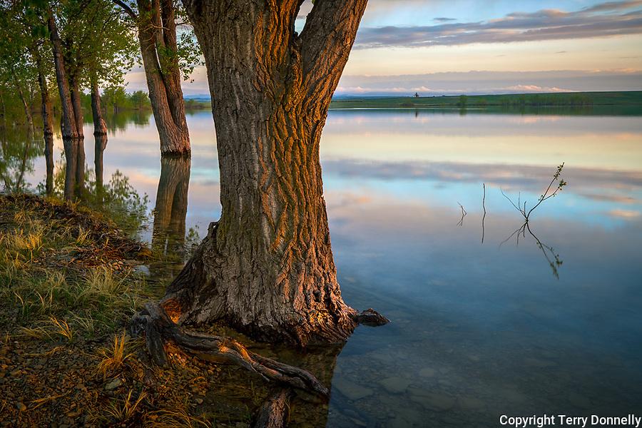 Belle Fourche National Wildlife Refuge, South Dakota:<br /> Evening reflections at dusk, Rocky Point Recreation Area