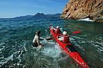 Descente des côtes corses (ici calanques de Piana vers Porto . Raid de 10 jours en kayak  de mer en bivouaquant sur les plages. Corse (côte ouest). France.
