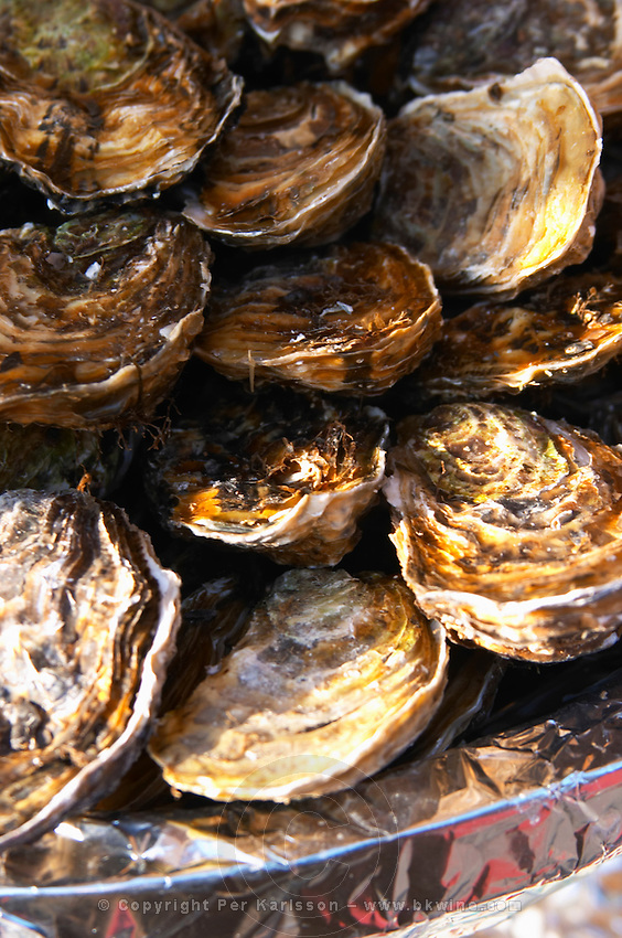 A plate of oysters.