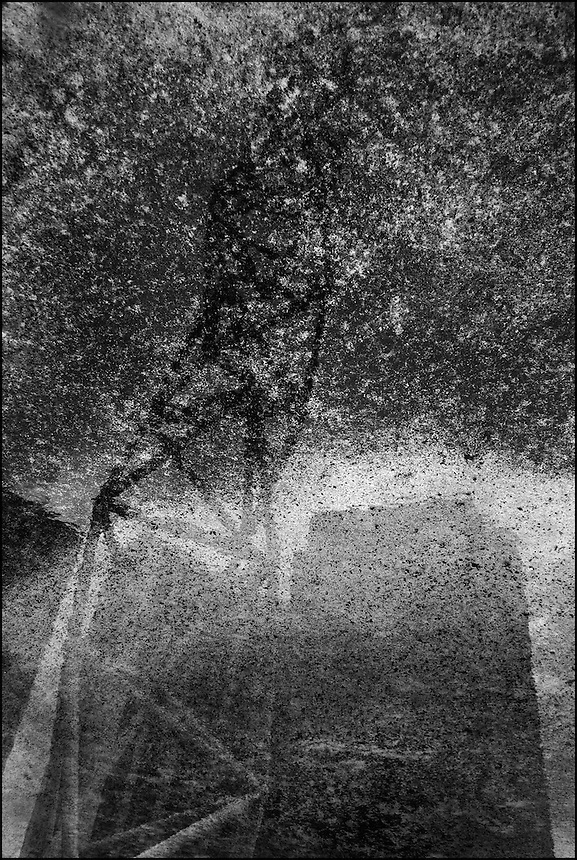 City of Rain<br /> From &quot;Miami in Black and White&quot; series. Downtown Miami, FL, 2008