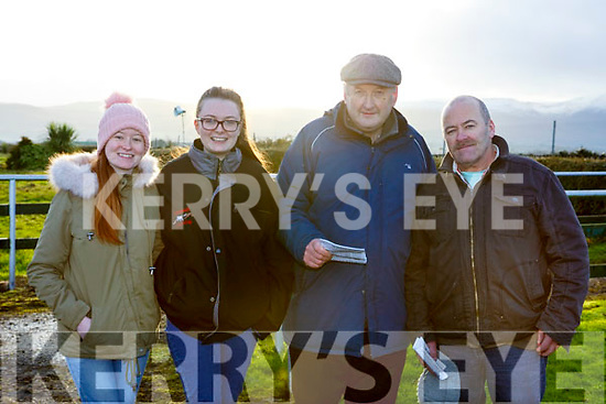 Attending the Kingdom Cup greyhounf meeting in Ballybeggan Park on Wednesday last, l-r, Ciara & Megan Horgan, Moss Joe Browne (Ballyduff) and Tom Horgan of Abbeydorney.