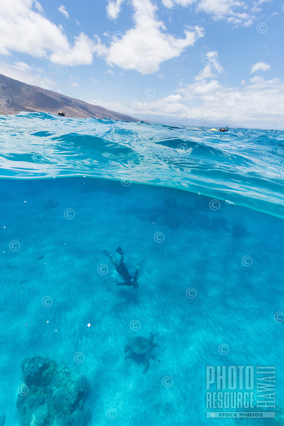 An over-and-under image of snorkelers and green sea turtles or off of Olowalu, Maui.