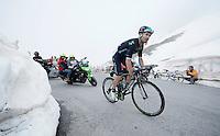 José Joaquín Rojas (ESP/Movistar) up the snow-covered Colle dell'Agnello (2744m)<br /> <br /> stage 19: Pinerolo(IT) - Risoul(FR) 162km<br /> 99th Giro d'Italia 2016