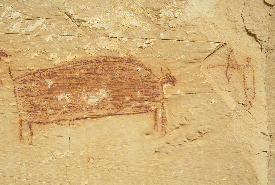 Hunter and bison pictograph on canyon wall, Horseshoe Canyon Unit, Maze District, Canyonlands National Park, Utah.