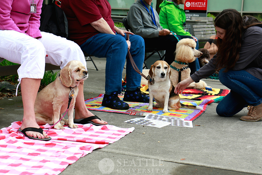Destress With Dogs Spring 2017 - May 30th