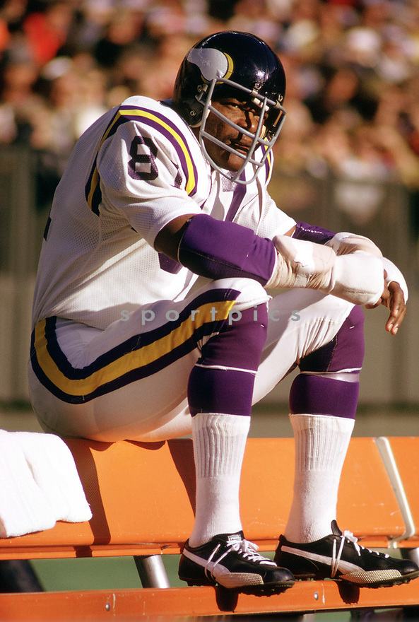 Minnesota Vikings Carl Eller (81) during a game from his 1973 season with the Minnesota Vikings. Carl Eller played for 16 seasons with 3 different team, was a 6-time Pro Bowler and was inducted into the Pro Football Hall of Fame in 2004.(SportPics)