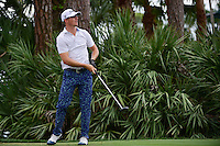 Morgan Hoffman (USA) watches his tee shot on 2 during round 3 of the Honda Classic, PGA National, Palm Beach Gardens, West Palm Beach, Florida, USA. 2/25/2017.<br /> Picture: Golffile | Ken Murray<br /> <br /> <br /> All photo usage must carry mandatory copyright credit (&copy; Golffile | Ken Murray)