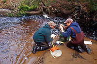 Brook trout research on the Hurricane River near Grand Marais Michigan in Michigan's Upper Peninsula.