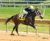 Flying Slew winning at Delaware Park on 6/27/16