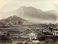 BNPS.co.uk (01202 558833)<br /> Pic: DominicWinterAuction/BNPS<br /> <br /> Incredible rural scene across modern day Kowloon.<br /> <br /> Revealed - A fascinating photo album from the very early days of British Hong Kong...long before the skyscrapers covered it over.<br /> <br /> The 150 year old photos of Hong Kong taken by one of the first British photographers to venture to the Far East have emerged for sale for £15,000.<br /> <br /> John Thomson, who was also a geographer, left Edinburgh for Singapore in 1862 and spent the following decade travelling the region.<br /> <br /> He explored a decidely low-rise Hong Kong from 1868 to 1870, taking numerous pictures of the rapidly expanding settlement and its industrious inhabitants.<br /> <br /> They capture the area, which is currently engulfed in unrest and protest, at a far more tranquil time.<br /> <br /> The photos are being sold with auction house Dominic Winter, of Cirencester, Gloucs.