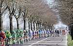 The peloton ride past Voghera during the 2016 Milan-San Remo race, running 293km from Milan to San Remo, Italy. 19th March 2016.<br /> Picture: ANSA/Claudio Peri | Newsfile<br /> <br /> <br /> All photos usage must carry mandatory copyright credit (© Newsfile | Claudio Peri)