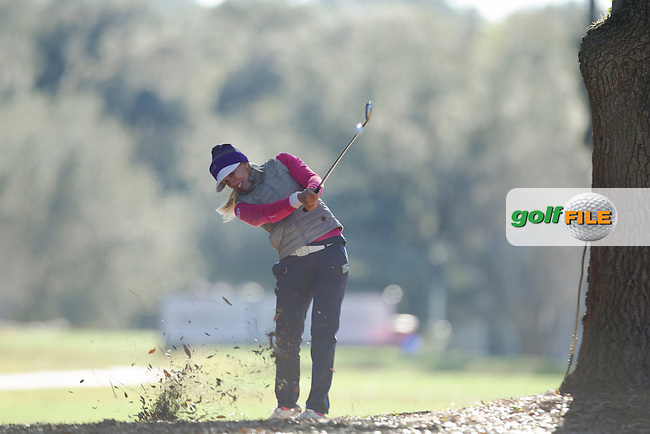Pernilla Lindberg hits a shot out of the tree's during the Second day of the Second round of the LPGA Coates Golf Championship 2016 , from the Golden Ocala Golf and Equestrian Club, Ocala, Florida. 5/2/16<br /> Picture: Mark Davison | Golffile<br /> <br /> <br /> All photos usage must carry mandatory copyright credit (&copy; Golffile | Mark Davison)