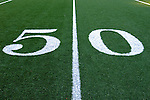 21 October 2007: The artificial turf and the 50 yard line at Ralph Wilson Stadium in Orchard Park, NY. ..Mandatory Photo Credit: Ed Wolfstein Photo