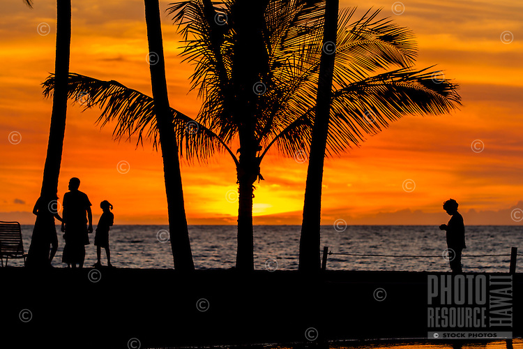 A colorful sunset-lit sky silhouettes a family amidst palm trees at 'Anaeho'omalu Bay and Waikola Beach, Big Island.
