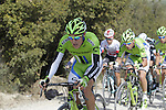 The peloton with Alberto Bettiol (ITA) Cannondale team on the front on the 5th sector of strade near Murlo during the 2014 Strade Bianche race over the white dusty gravel roads of Tuscany, Italy. 8th March 2014.<br /> Picture: Eoin Clarke www.newsfile.ie
