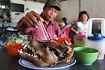 Dog Meat Abattoir Cambodia