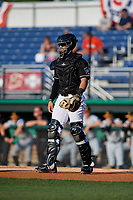 Batavia Muckdogs catcher Igor Baez (6) during a NY-Penn League game against the West Virginia Black Bears on June 26, 2019 at Dwyer Stadium in Batavia, New York.  Batavia defeated West Virginia 4-2.  (Mike Janes/Four Seam Images)